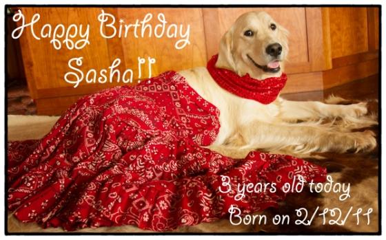 happy BD Sasha 2